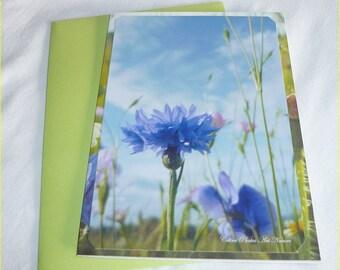 """Carte double """" Bleuet et fleurs des champs """" 10,5x15cm de Céline Photos Art Nature"""