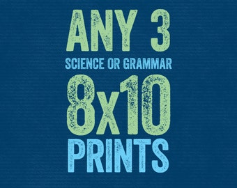 Grammatical Art Prints - SAVE ON 3 - Great for Teachers & Classrooms Home Decor Gift Teacher Gifts for Teachers English Gifts