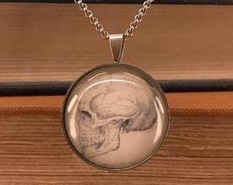 Human Skull Necklace | Steampunk Skull Necklace | Goth Skull Pendant | Anatomy Necklace | Macabre Jewelry | Oddity Pendant | Skull Pendant