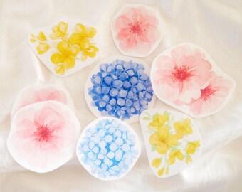 Watercolor Flower Stickers   Floral Art Sticker Set, Cherry Blossom, Hydrangea, Canola - Vintage Flower Illustration Handmade Transparent