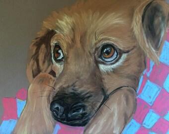 Dog, dog soul, original art, pastel drawing, dog eyes, lying dog, dog art, animal portrait, animal art