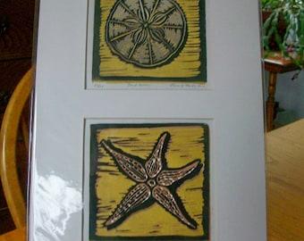 Sand Dollar and Starfish Block Prints