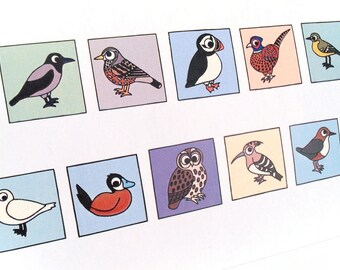 European Birds Happy Birthday Card - cryptic birds - puzzle card with message spelt out using cute cartoon birds, say it with birds