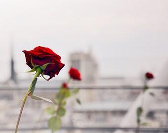 Trois Rouges - Paris Landcape Photography Print by Leigh Viner