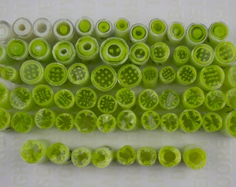 Cane progression green murrine