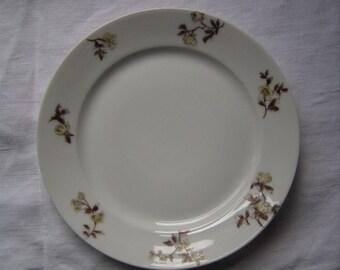 C.F. Haviland Limoges Plate circa 1880s