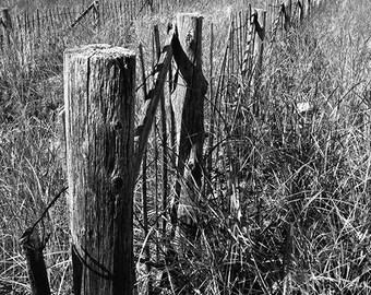 Holz gras zaun | Etsy