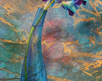 Flower Photography - Blue and purple orchids, 8x12 fine art photograph