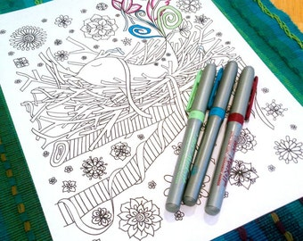 Coloring Page Bird Nest Flowers Nature Design Printable Drawing Adult Kids Art Activity Instant Download