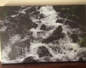 Canvas Photograph Moving stream water in Oreogon