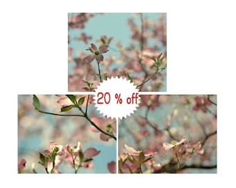 Pink dogwood flower photography set of 3 prints floral pictures, shabby chic decor wall art, little baby girl room bedroom decor aqua cream
