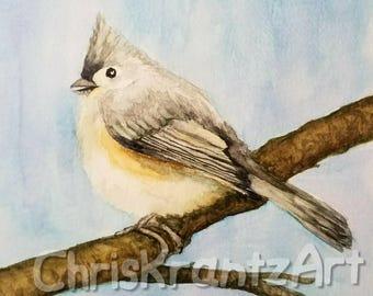 Tufted titmouse on branch 6x9 inch Original  Watercolor wildlife winter birding Outdoor Decor