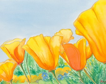 California Poppies Original Watercolor Painting on Arches Paper