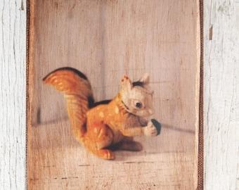 Vintage Toy Squirrel  Art/Photo - Wall Art 4x6