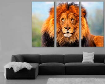 African Lion Color Photo Canvas Print Wall Art   3 Panel Split, Triptych.  Wall
