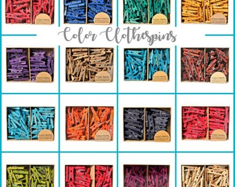 Colored mini clothespins. 50 Boxed hand dyed 1 inch mini pegs Wedding favor gift enclosure choose your colors