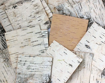 Birch Bark Sheets. Birch Sheets Craft. Birch Pieces. Birch Wood Sheets