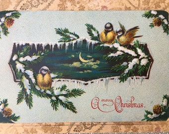 Charming Edwardian Era Postcard with Sweet Little Birds on Snowy Branches