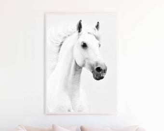 Black and white Horse Print, Horse Art, Printable Wall Art, Horse Photography Large Poster Download, Animal Photo Download h1bwp