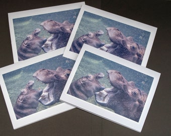 Fiona The Hippo Greeting Cards Handmade Photography Art Prints Gift for Her Birthday Card Fiona The Hippo Stationary Birthday Card Print