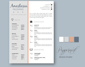 Timeline resume etsy resume template with cover letter for word with timeline yelopaper Choice Image