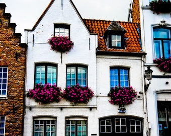 Brugge Belgium Europe Architecture Building Flower Box - Pink on White