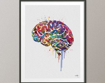 Brain Anatomy Watercolor Print Medical Art Science Art Wall Decor Wall Art Neurology Human Brain Doctor Gift Science Poster Wall Hanging-428