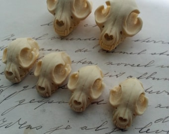Cat Skull Cameo Cabs Resin Cabochon Taxidermy Animal Steampunk Gothic Goth Skull Ivory 35x27mm and 25x18mm 6 PIECES