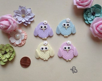 Clay Flatback cute owl embellishments deco topper pack of 2