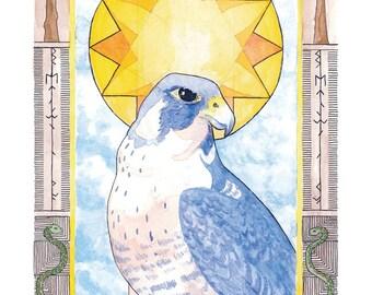 Midsummer Falcon Print