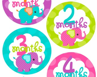 Monthly Baby Stickers - Elephants - Baby Boy - Photo Prop - Nursery Decor - New Baby