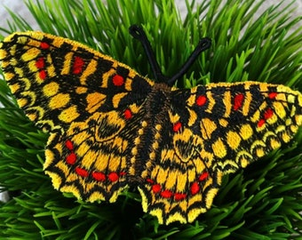 Spanish Festoon Butterfly