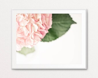 Hydrangea Photo - Hydrangea Print, Floral Photography, Floral Print, Home Decor, Dreamy Photo, Ethereal Photo, Pink, White, Floral Wall Art