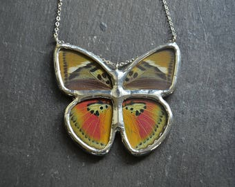 Butterfly Wing Jewelry Real Butterfly Necklace Euphaedra Hebes Butterfly Gift For Her Gift For Mom Boho Jewelry Woodland Jewelry Nature