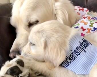Dog Bandana, Puppy Gift, Personalized Hashtag, Dog Bandana with Hashtag, Size Extra Extra Small to Extra Large, Reversible, Pet Accessories