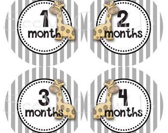 Baby Monthly Stickers Baby Month Stickers Baby Milestone Stickers Baby Monthly Stickers Giraffe Baby Stickers