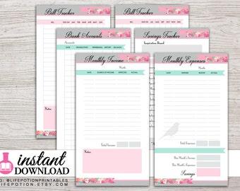 Planner Printable - Finance Inserts - Income - Expense Tracker - Filofax Personal - Kikki K Medium - LV MM - Design: Flirty Girl