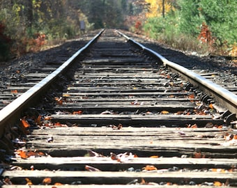 Railroad tracks train tracks stock photo image free use