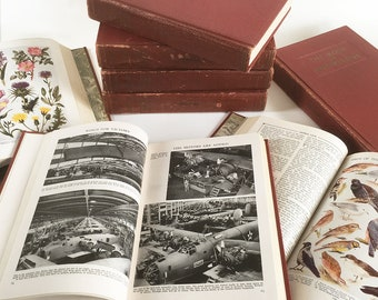 "Set of 11 Volumes of Grolier's ""The Book of Knowledge"", Children's Encyclopedia, World War II Edition"