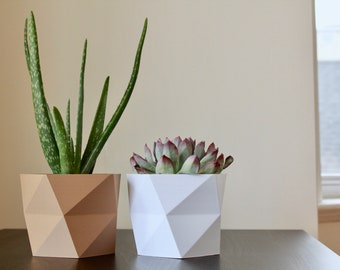 3D Printed Twisted Minimal Design Planter, Simple Modern Pot for House Plants and Succulents