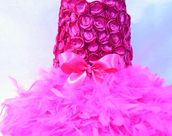 Hot Pink Paws Rosette Feather Harness Dog Dress