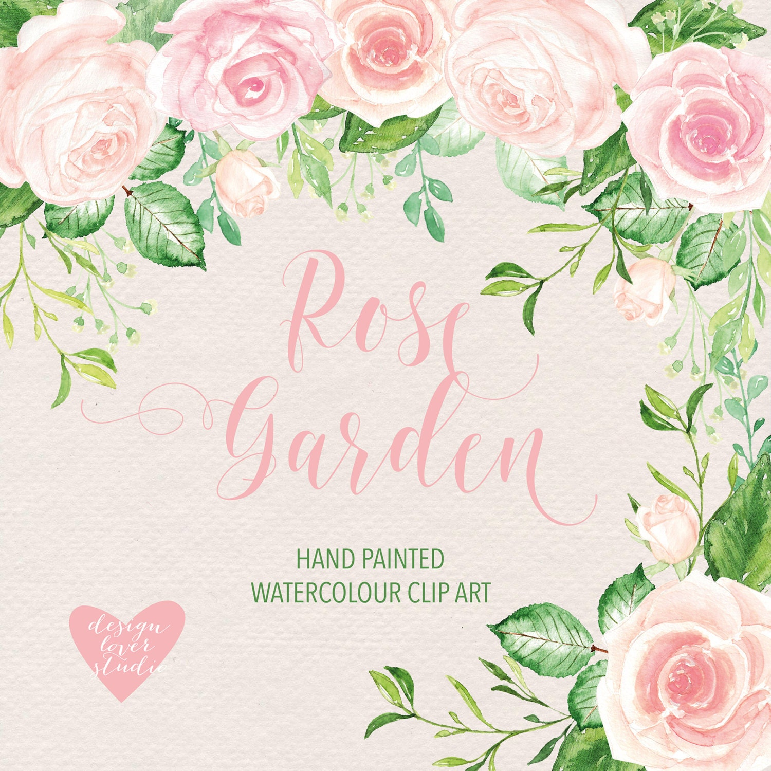 Watercolor Rose Blush Clipart Watercolor Flower Pink Floral