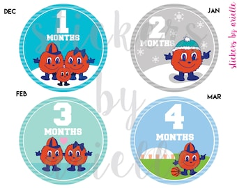 Month by Month Baby Stickers - Otto the Orange Syracuse Theme