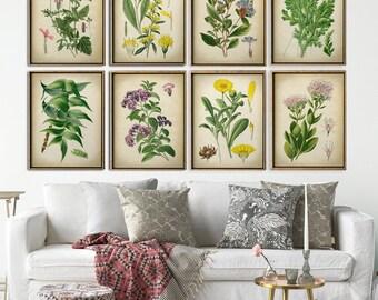 BOTANICAL print SET of 8 flower prints, yellow and green plants, botanical poster, flower poster, flowers print set, botanical illustration