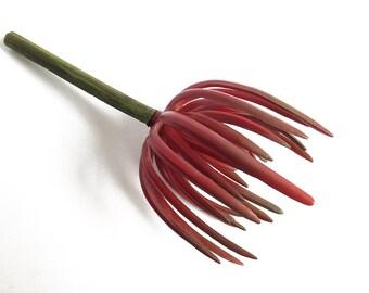 Red senecio, faux succulent, Succulent plant, red succulent cutting, succulent planter, senecio, fake flowers, sedum, senecio plant