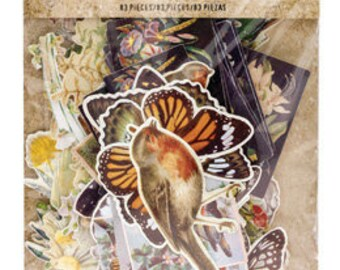 BOTANICALS EPHEMERA  by Tim HOLTZ  - Pkg. of 82 Die cuts !!  New and In Stock Now !!