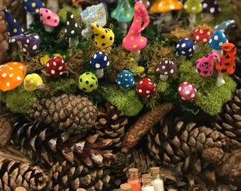 Miniatures / Miniature Mushroom Garden Mushroom Fairy Garden miniature garden terrarium accessories enchanted forest fairy garden toadstool