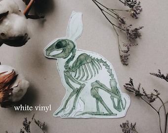 Rabbit Skeleton Sticker | Planner Laptop Wall Art | Unique Gift Vet Pet Animal Anatomy, Bunny Hare, Cute Woodland Decal, WHITE VINYL