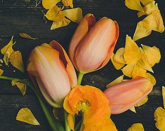 Spring Bouquet Photograph - Flower Photography - Floral Decor - Tulip Art Print - Petals - Still Life Photo - Shabby Chic Decor - Farmhouse