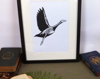 Art-Anatomy: bird skeleton - cut Silhouette in canson paper black 150g - Papercut Anatomy Bird Skeleton